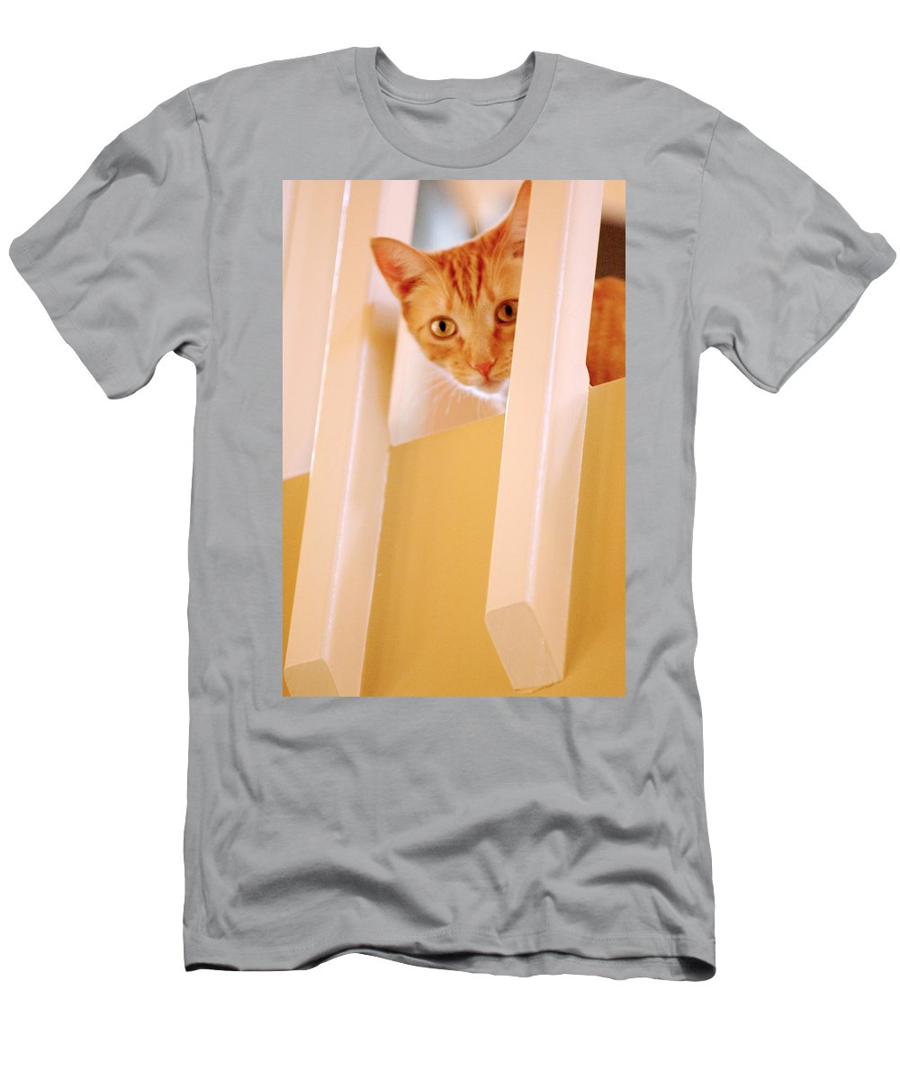 Animal Men's T-Shirt (Athletic Fit) featuring the photograph Cat Spy by Jill Reger