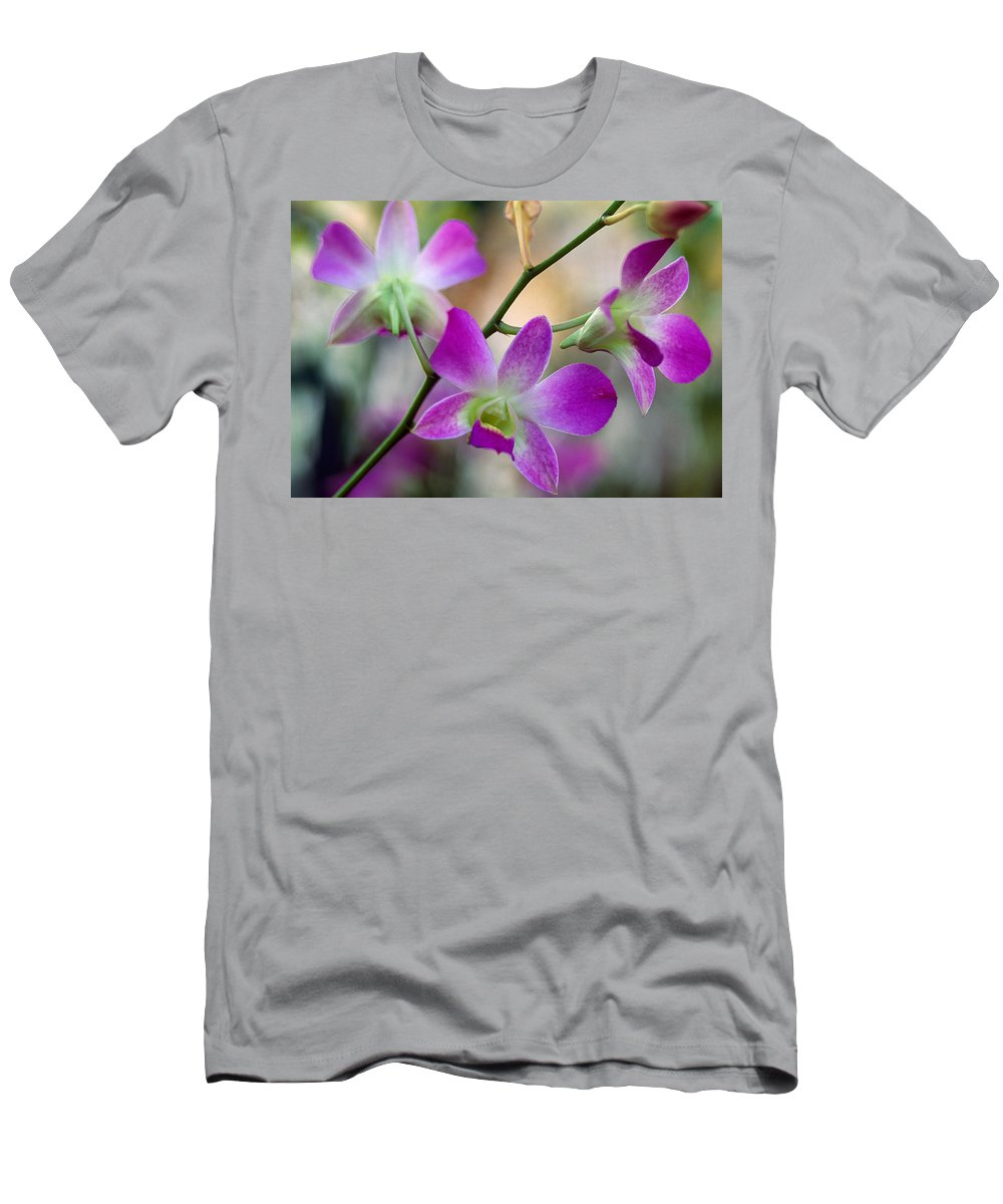 Cattleya Orchid Flower Blossoms Close Mens T Shirt Athletic Fit