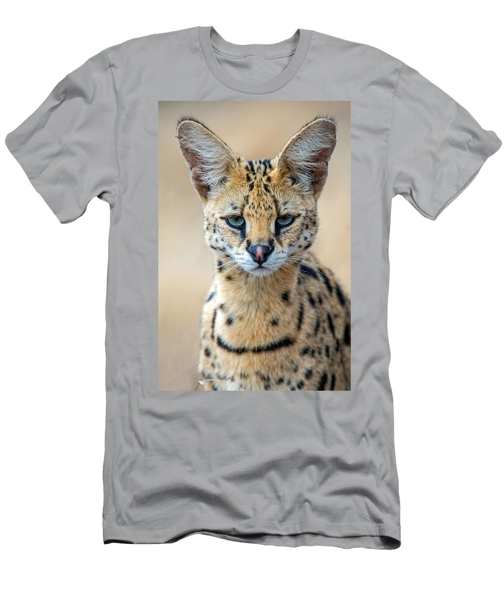 Photography Men's T-Shirt (Athletic Fit) featuring the photograph Close-up Of Serval Leptailurus Serval by Panoramic Images