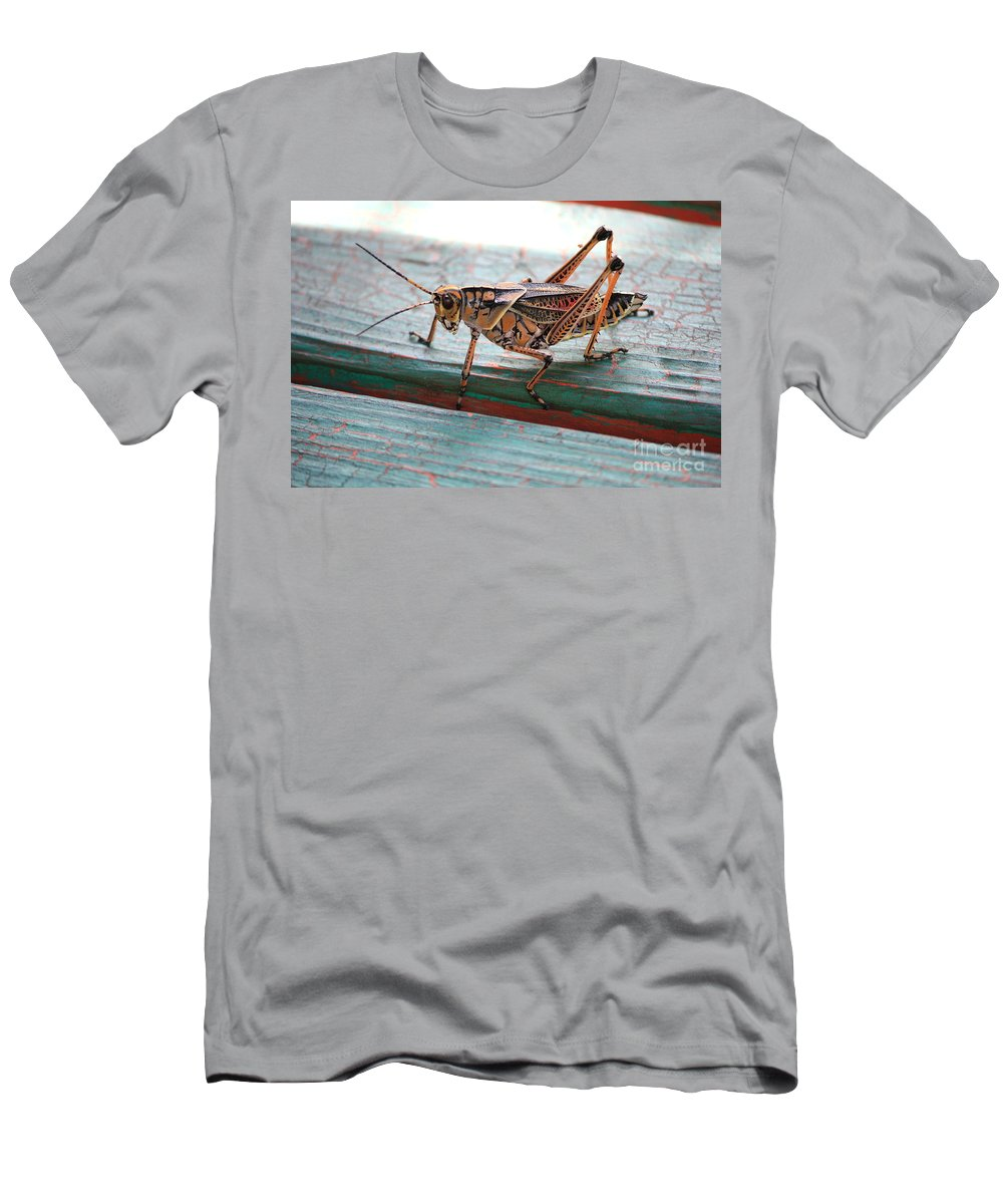 Insects Men's T-Shirt (Athletic Fit) featuring the photograph Colorful Grasshopper by Carol Groenen
