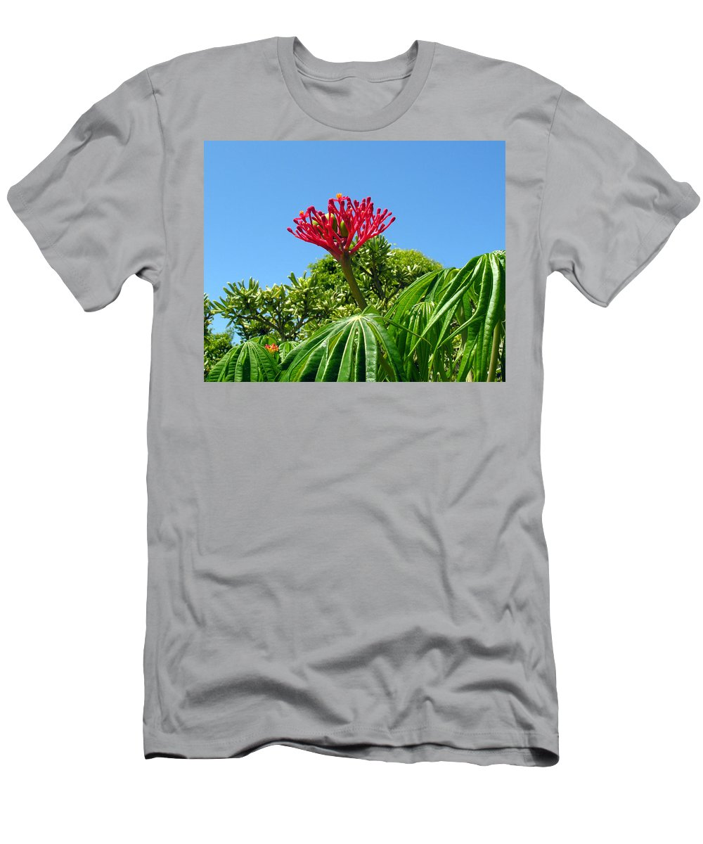 Coral; Bush; Coralbush; Weed; Flower; Leaf; Leaves; Fruit; Nut; Seed; Florida; Wild; Vacant; Lots; N Men's T-Shirt (Athletic Fit) featuring the photograph Coral Bush With Flower And Fruit by Allan Hughes
