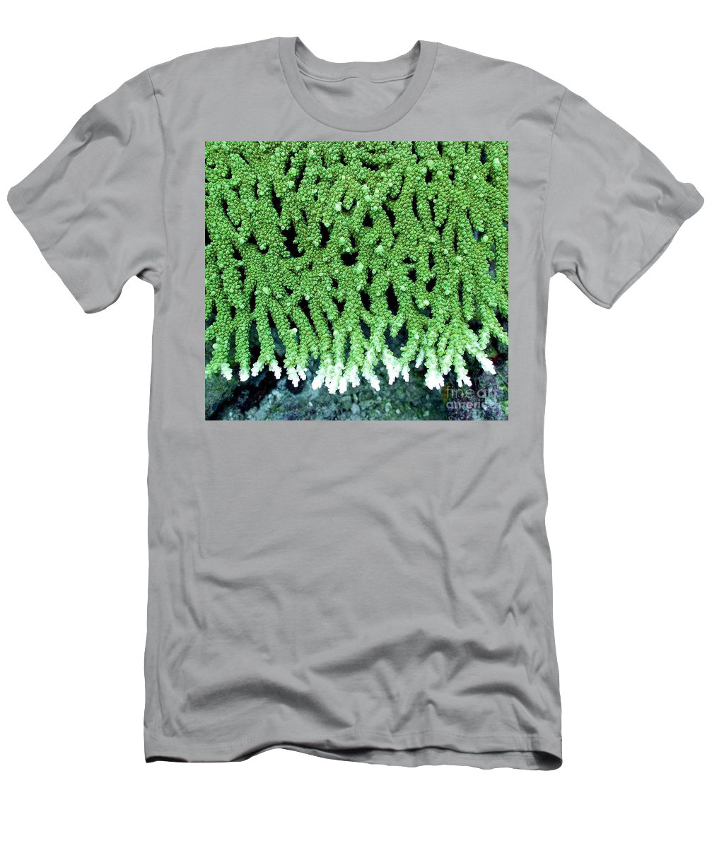 Coral Men's T-Shirt (Athletic Fit) featuring the photograph Coral by Dragica Micki Fortuna