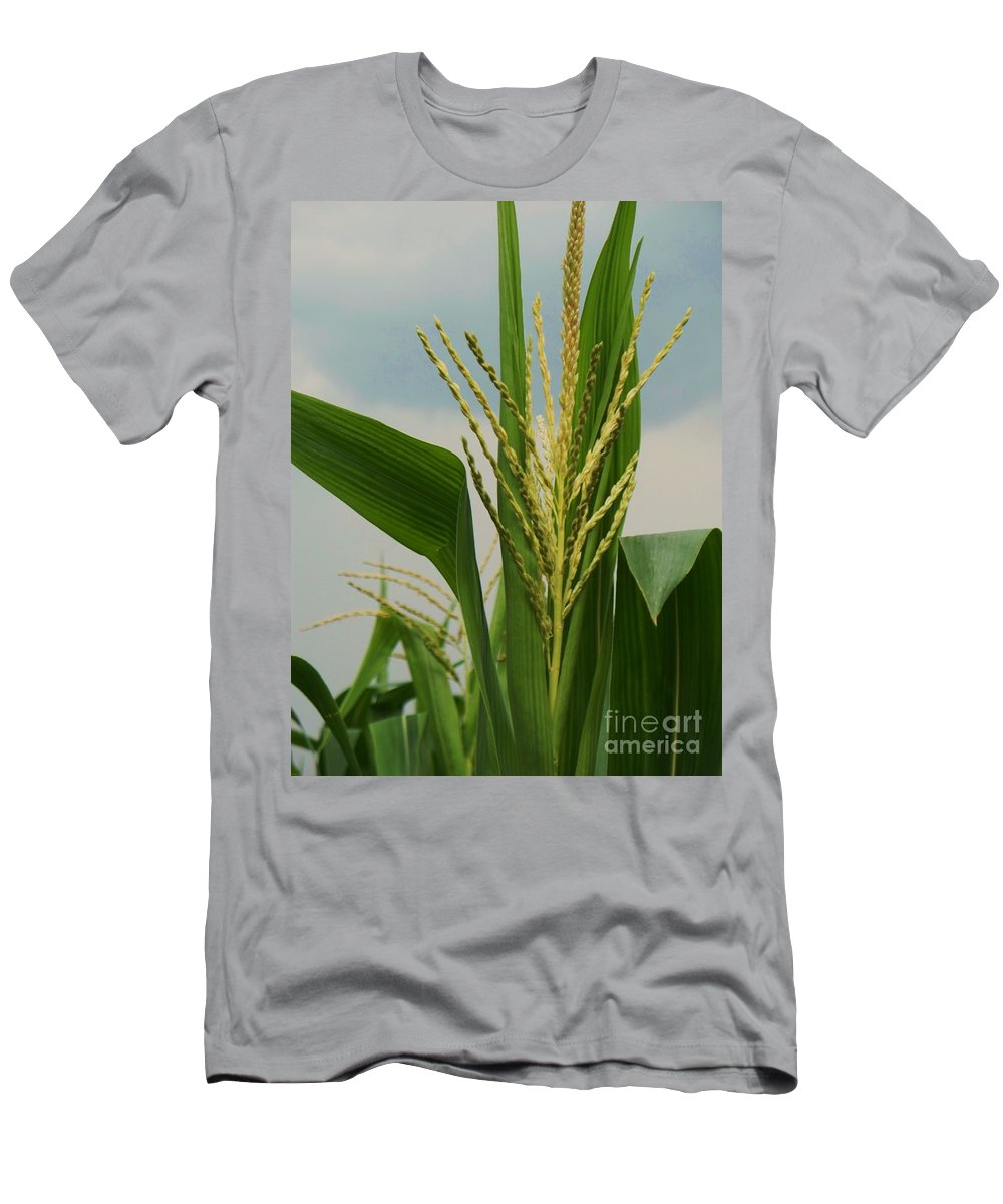 Corn Stalk Men's T-Shirt (Athletic Fit) featuring the photograph Corn Stalk by Eric Schiabor