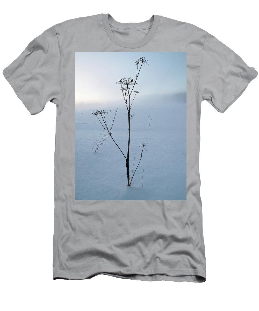 Lehtokukka Men's T-Shirt (Athletic Fit) featuring the photograph Cow Parsley by Jouko Lehto