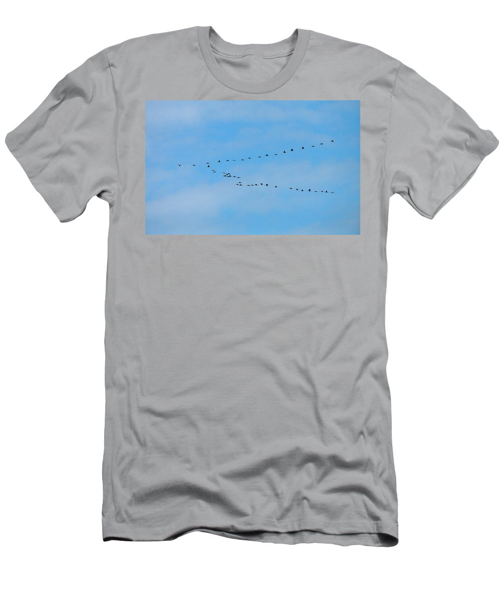 Lehtokukka Men's T-Shirt (Athletic Fit) featuring the photograph Crane Formation by Jouko Lehto