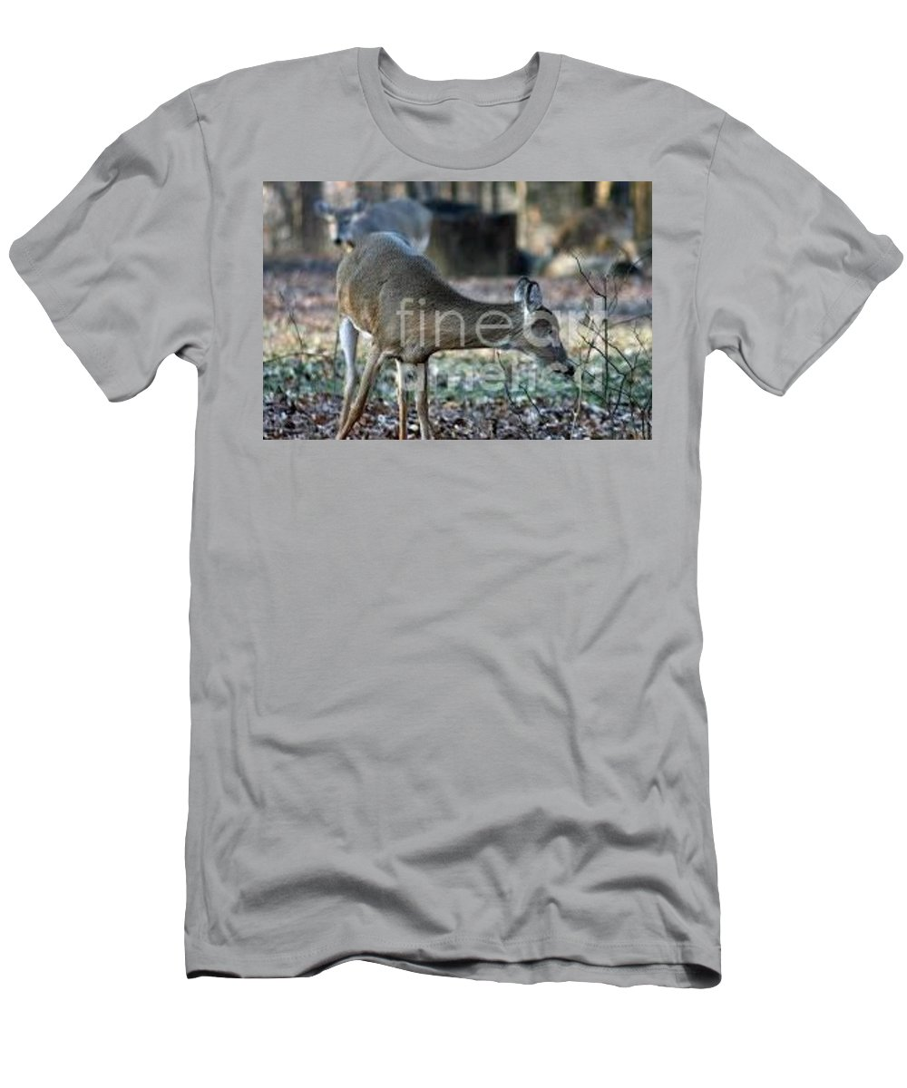 Whitetail Deer Men's T-Shirt (Athletic Fit) featuring the photograph Curious Deer by Lana Raffensperger