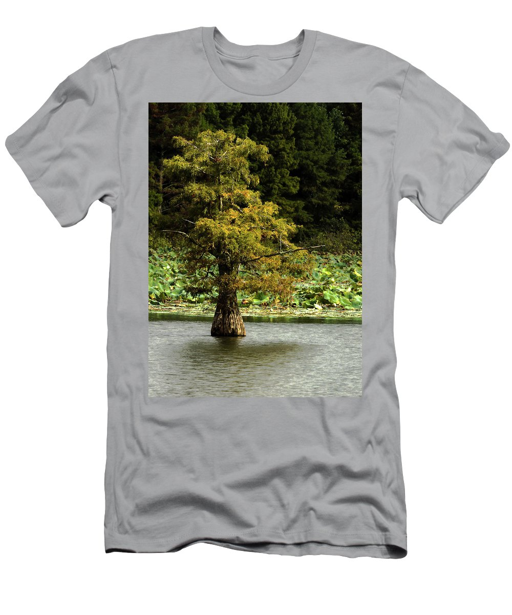 Cypress Tree Men's T-Shirt (Athletic Fit) featuring the photograph Cypress Matters by Jeff Kurtz