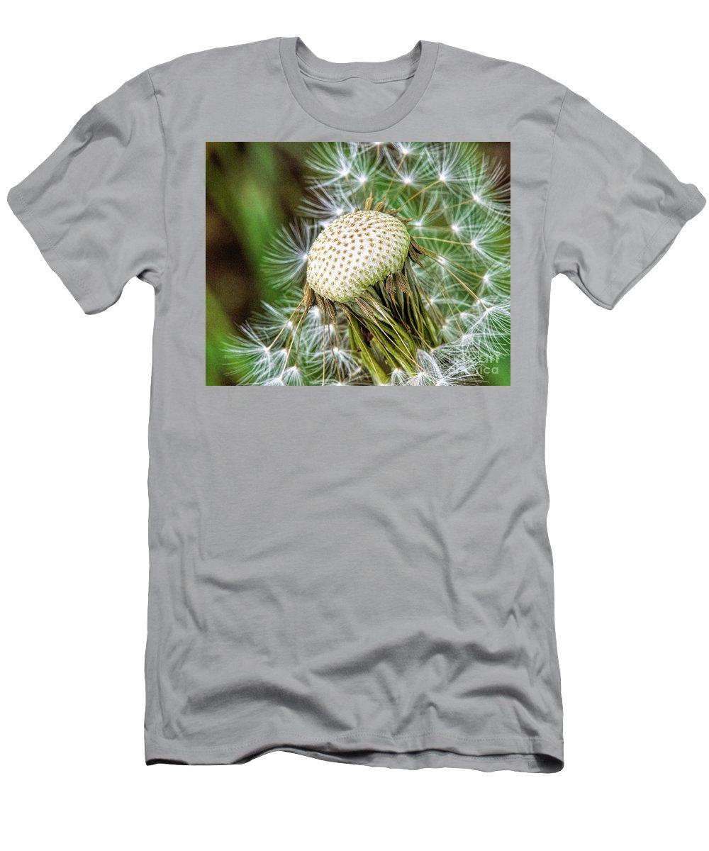 Floral Photography Men's T-Shirt (Athletic Fit) featuring the photograph Dandelion Seeds by Norman Gabitzsch