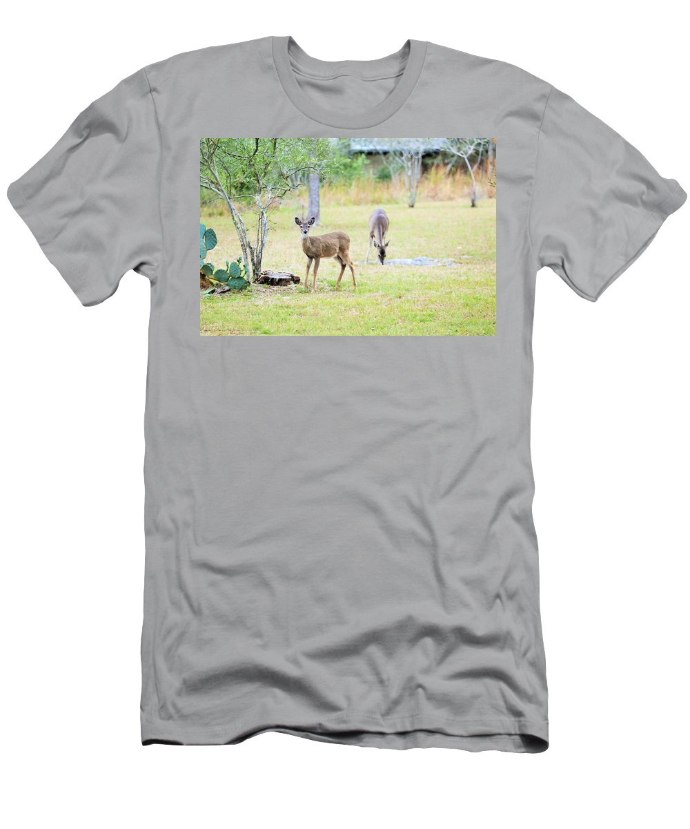 Men's T-Shirt (Athletic Fit) featuring the photograph Deer18 by Jeff Downs