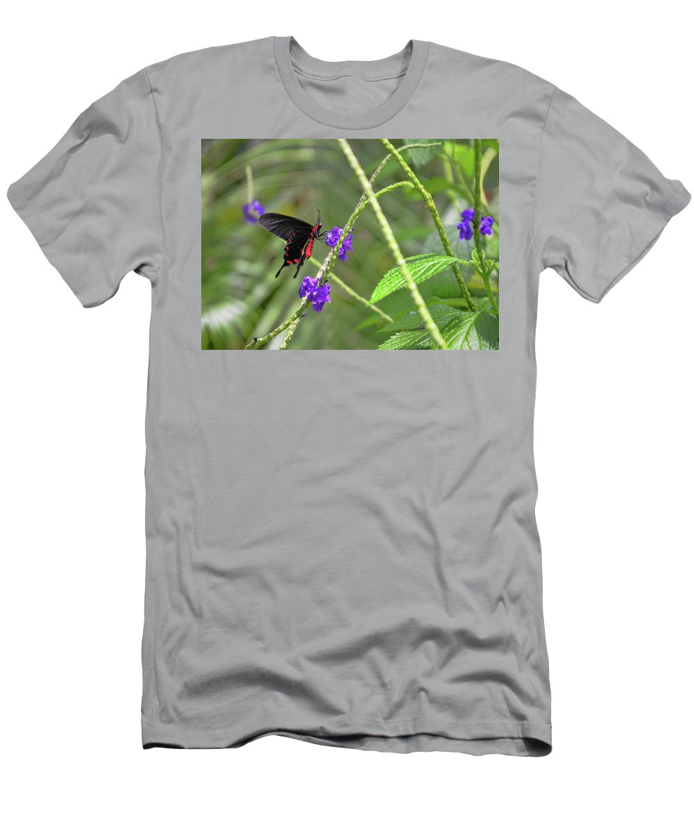 Swallowtail Men's T-Shirt (Athletic Fit) featuring the digital art Dinnertime by Anita Hubbard