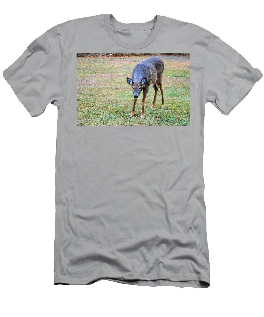 Doe Men's T-Shirt (Athletic Fit) featuring the photograph Doe Stomp by Kristin Elmquist