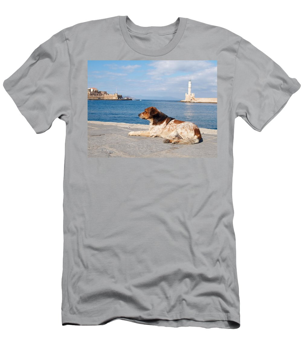 Architecture Men's T-Shirt (Athletic Fit) featuring the photograph Dog Watch by Jouko Lehto