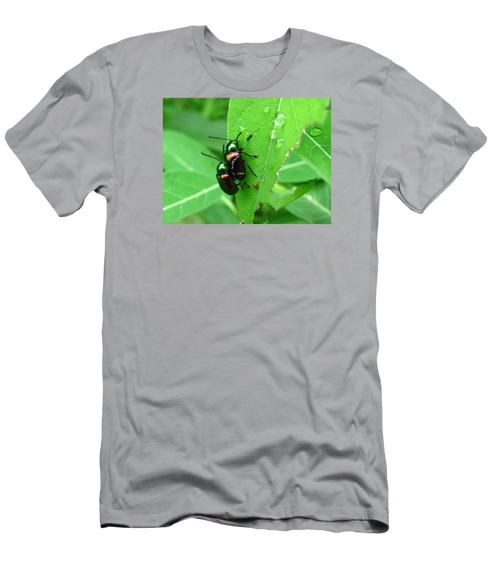 Dogbane Beetle Images Dogbane Beetle Prints Dogbane Beetle Reproduction Dogbane Beetles Mating Entomology Biodiversity Meadow Ecology Insect Diversity Colorful Beetle Images Metalic Beetle Images Men's T-Shirt (Athletic Fit) featuring the photograph Dogbane Beetles by Joshua Bales