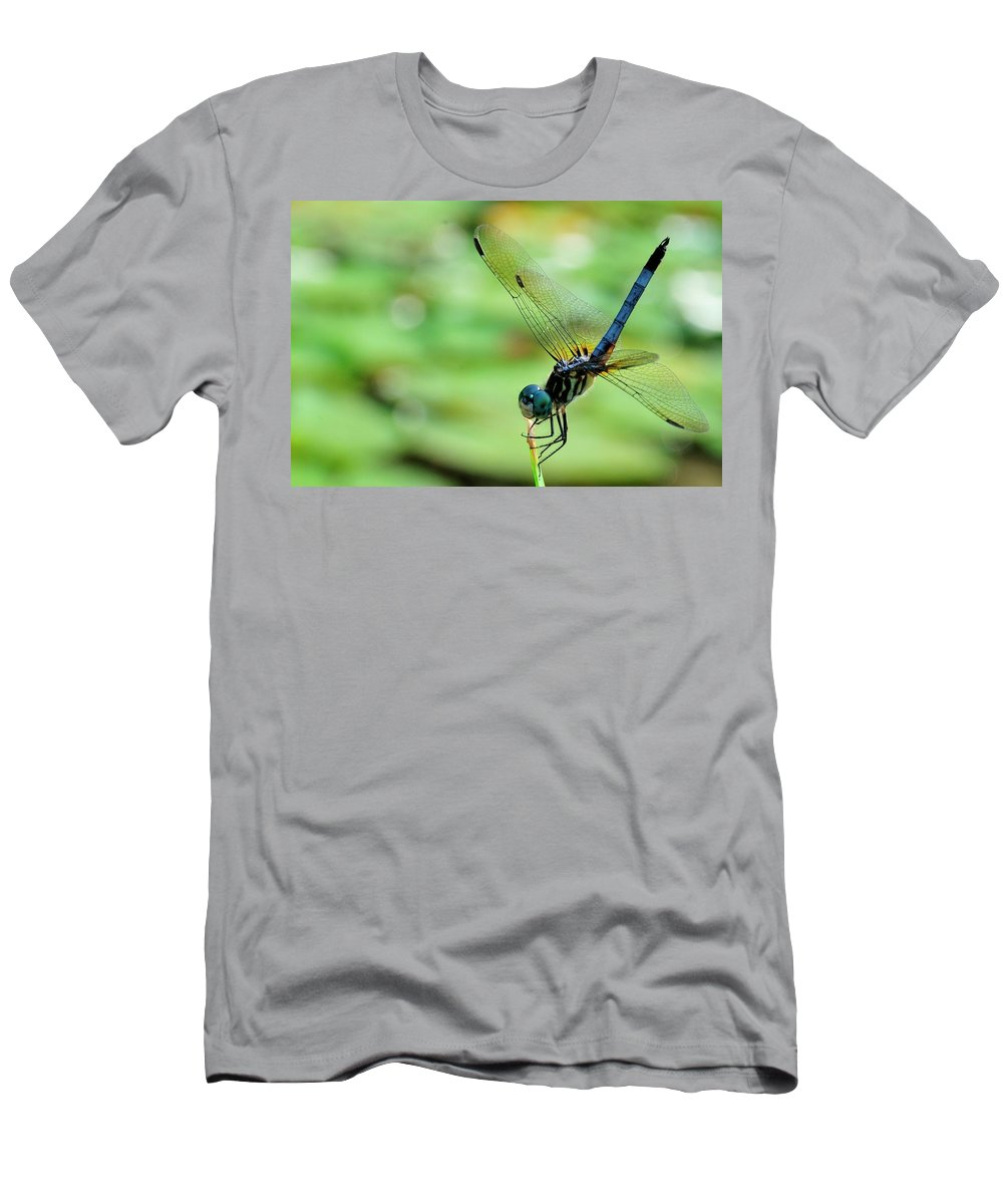 Dragon Fly Men's T-Shirt (Athletic Fit) featuring the photograph Dragon Fly by David Arment