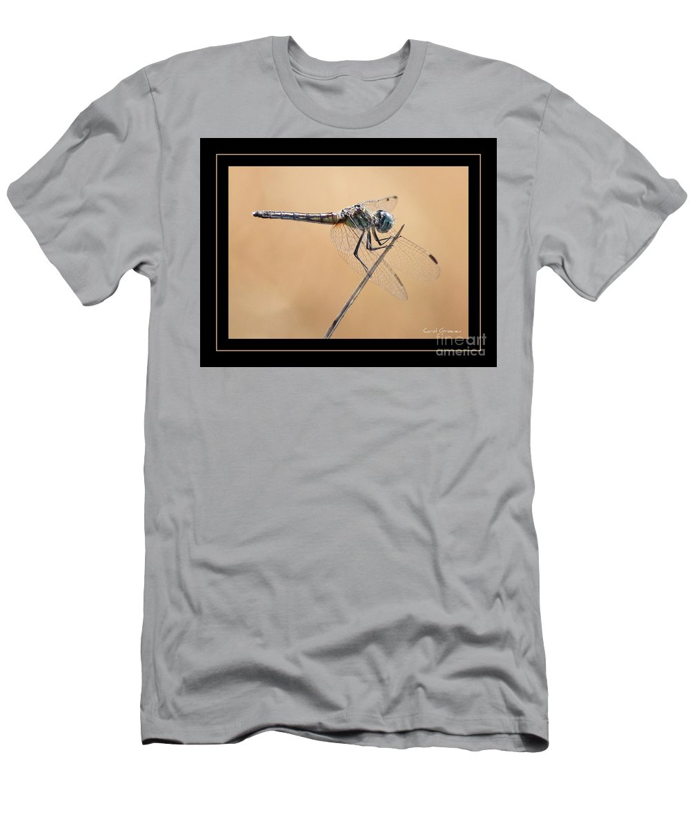 Dragonfly Men's T-Shirt (Athletic Fit) featuring the photograph Dragonfly Needlepoint With Border by Carol Groenen