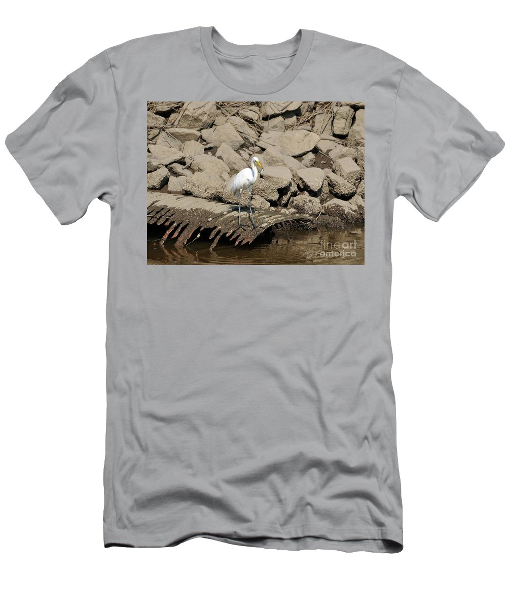 Great Egret Men's T-Shirt (Athletic Fit) featuring the photograph Egret Fishing by Al Powell Photography USA