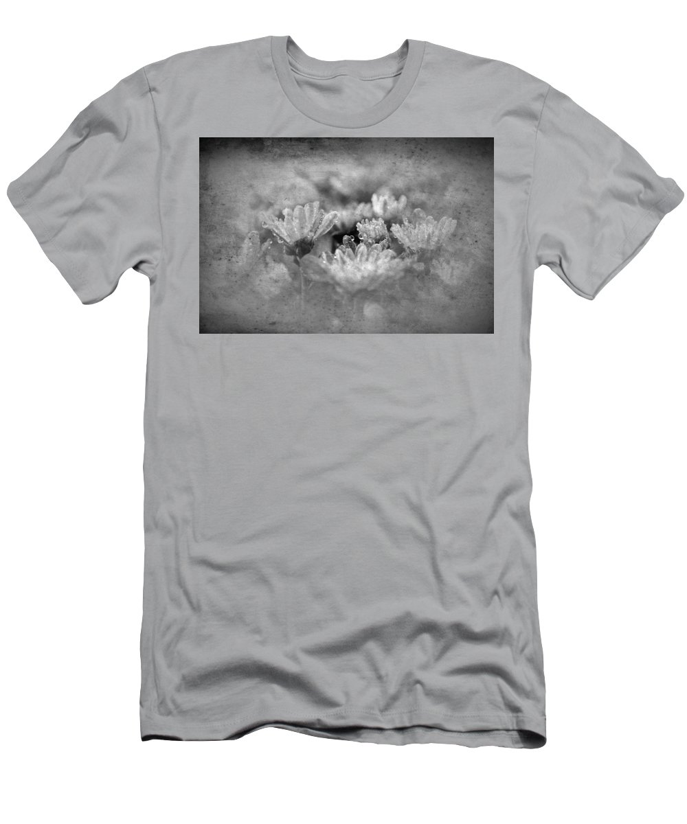 Rose Men's T-Shirt (Athletic Fit) featuring the photograph Etched In Stone 6 by Paul Gavin