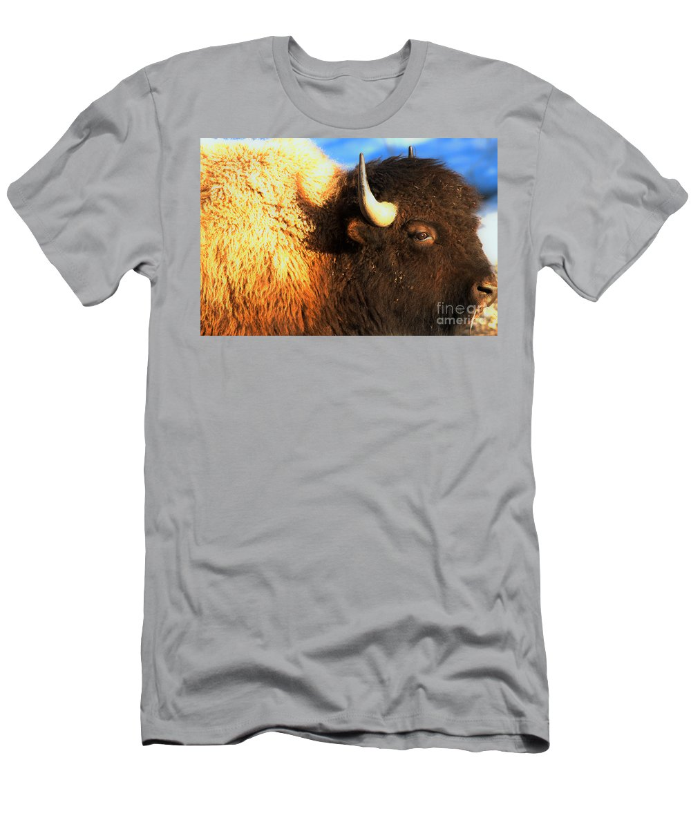 Bison Men's T-Shirt (Athletic Fit) featuring the photograph Eyes Of The Bison Spring 2018 by Adam Jewell