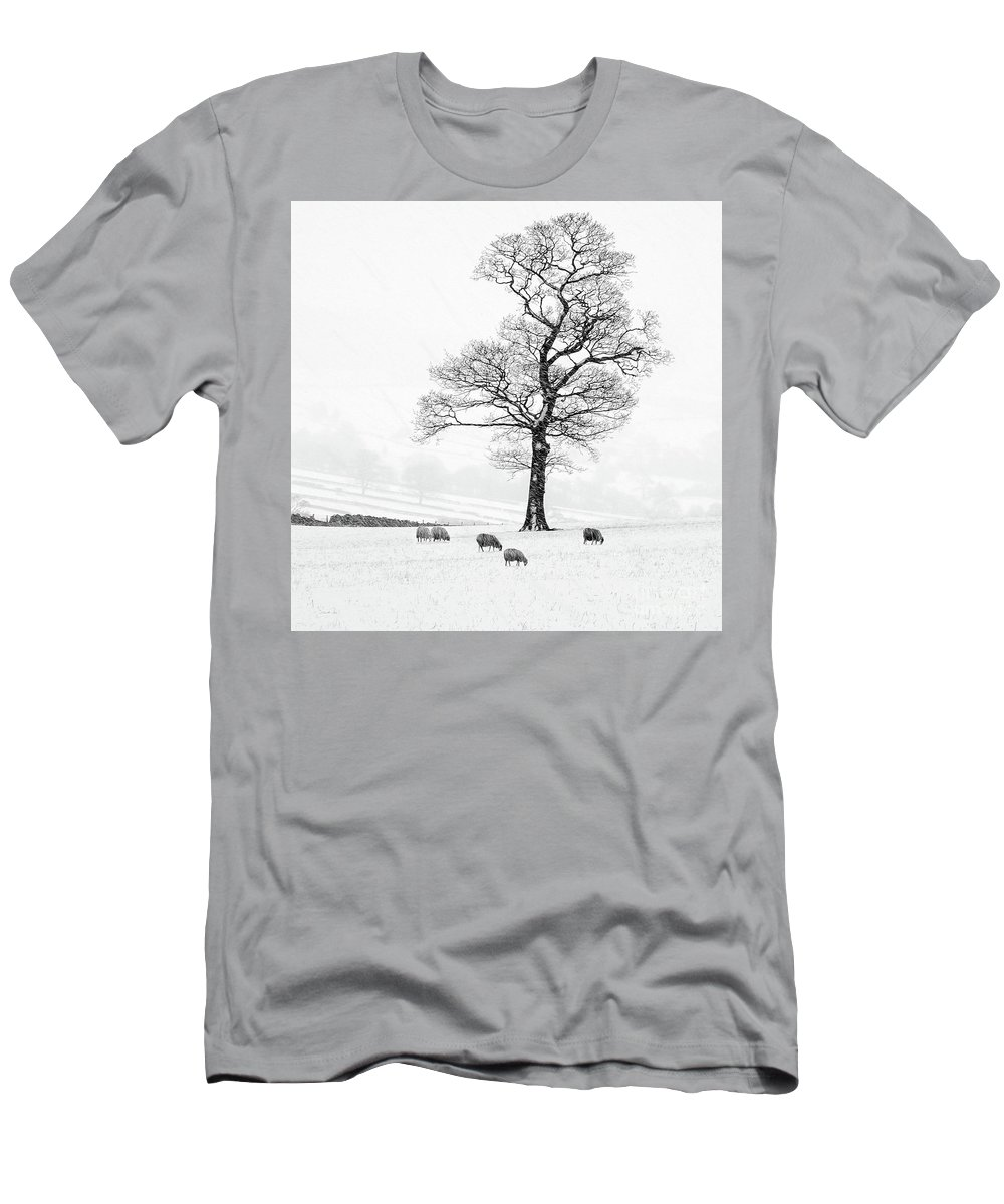 Sheep In Winter Men's T-Shirt (Athletic Fit) featuring the photograph Farndale Winter by Janet Burdon