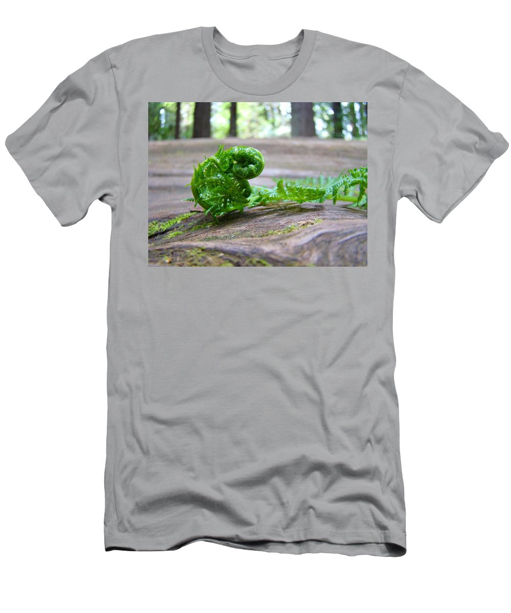 Fern Men's T-Shirt (Athletic Fit) featuring the photograph Fern On Big Redwood Tree Art Prints Baslee Troutman by Baslee Troutman