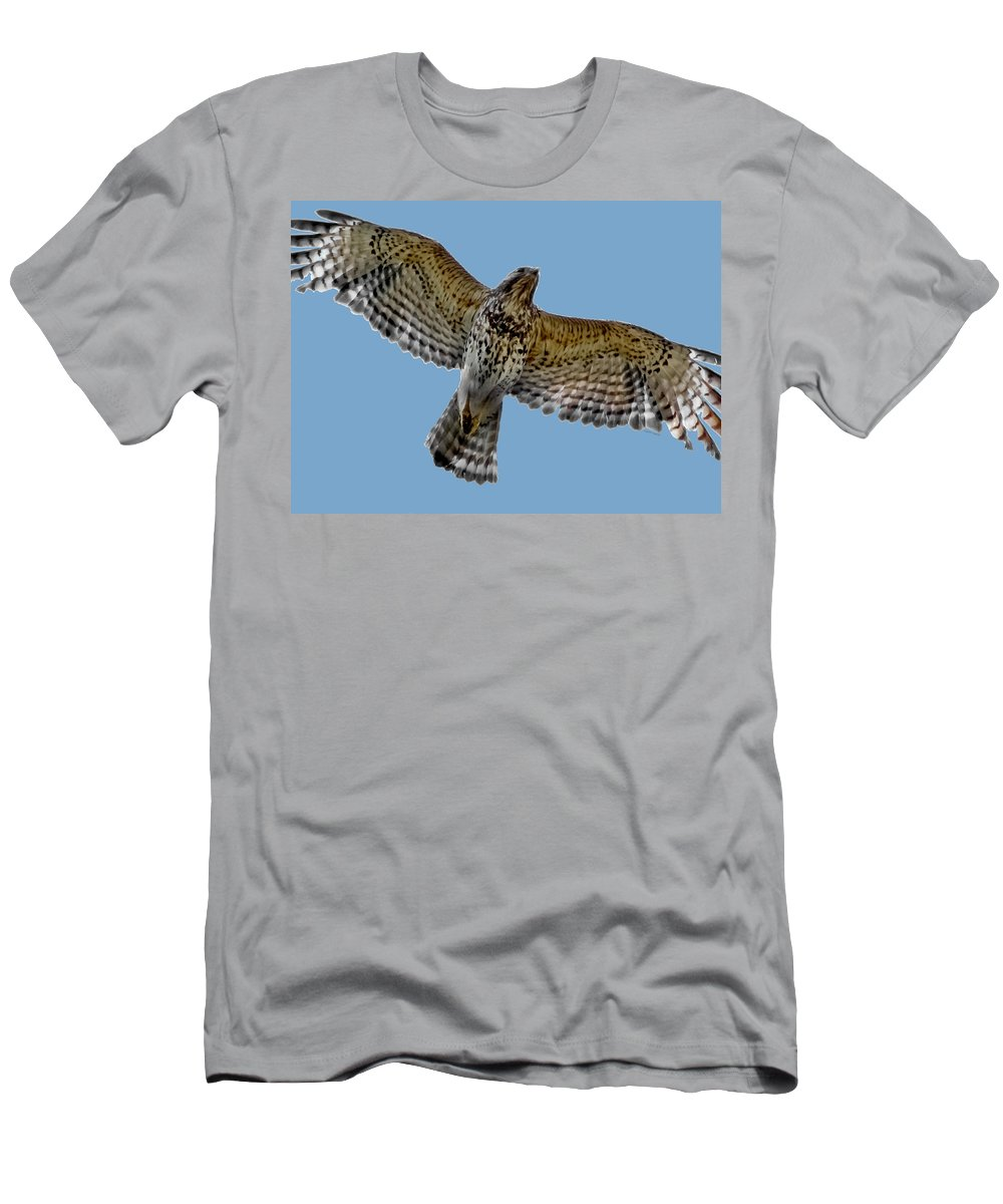 Hawk Men's T-Shirt (Athletic Fit) featuring the digital art Flight Of The Red Shouldered Hawk by DigiArt Diaries by Vicky B Fuller