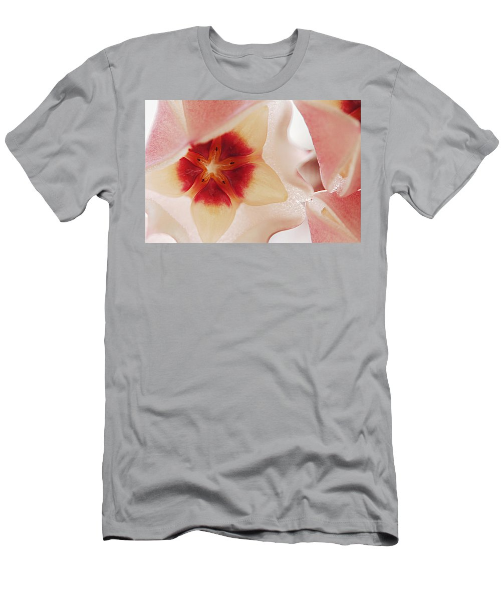 Flower Men's T-Shirt (Athletic Fit) featuring the photograph Flower Hoya 3 by Jill Reger