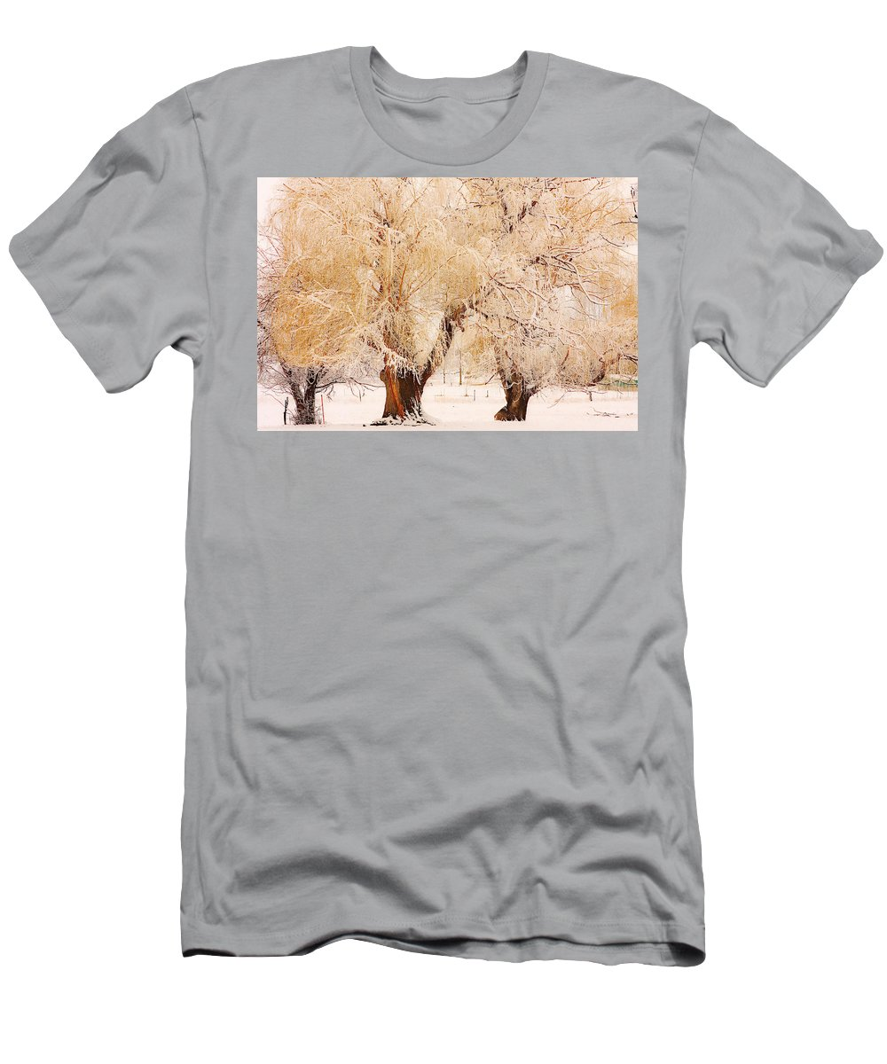 Trees Men's T-Shirt (Athletic Fit) featuring the photograph Frosted Golden Trees by James BO Insogna