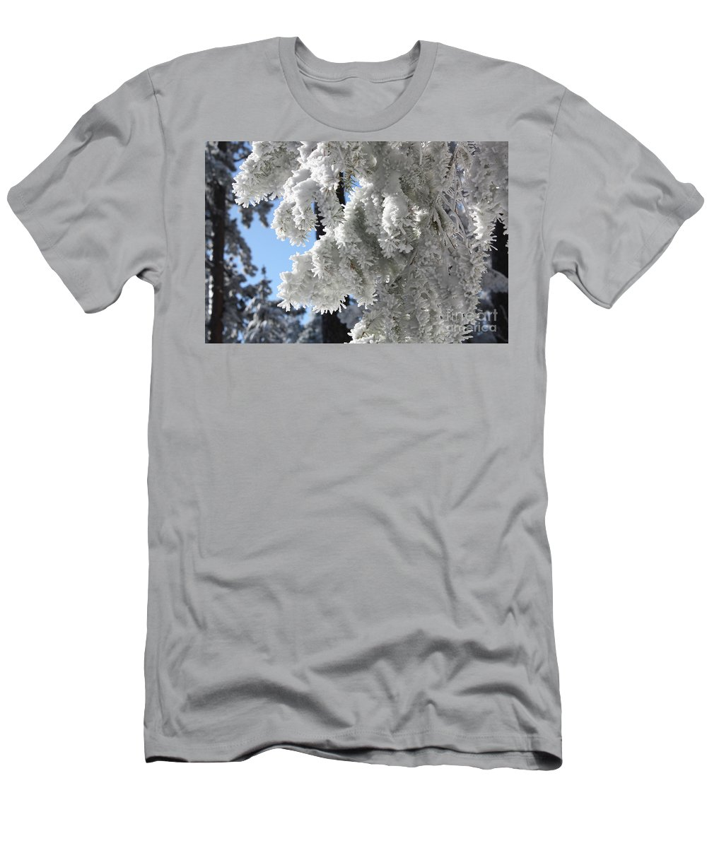 Hoar Frost Men's T-Shirt (Athletic Fit) featuring the photograph Frosted Pine Needles by Andrew Terrill
