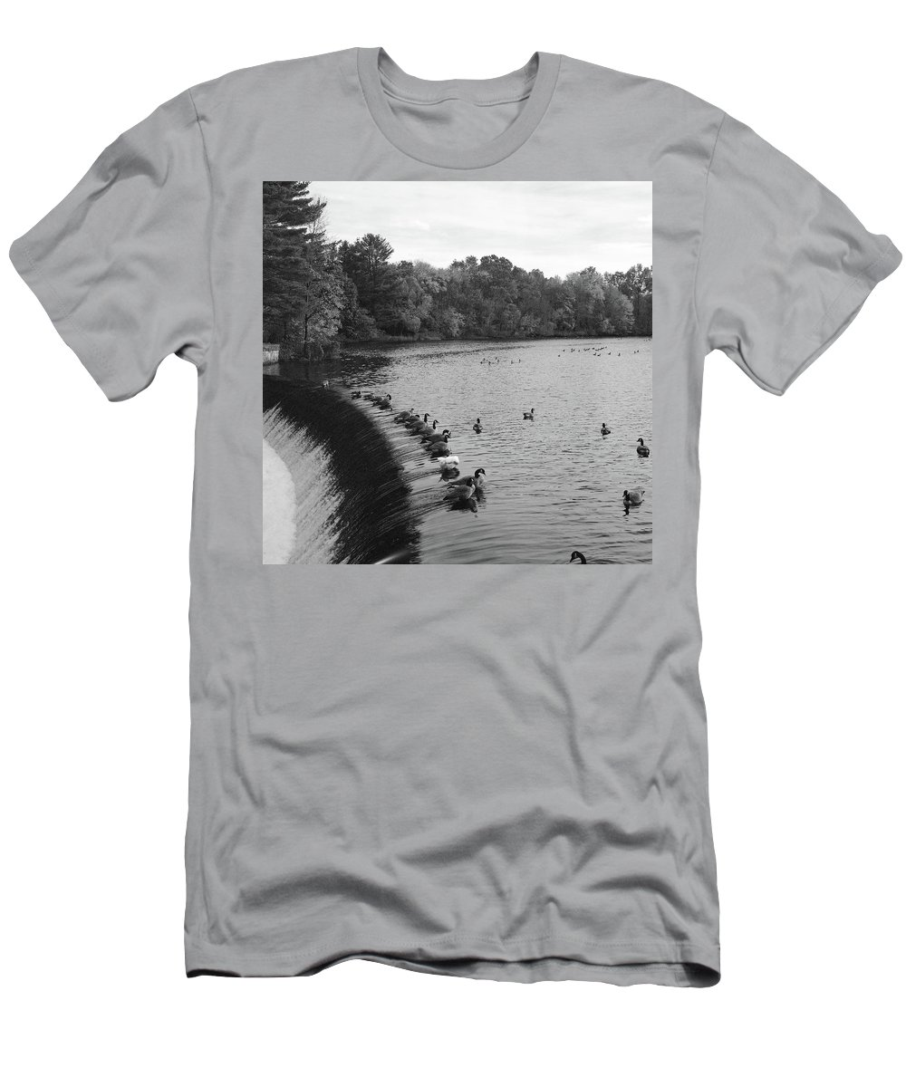 Ducks Men's T-Shirt (Athletic Fit) featuring the photograph Ducks And Canada Geese On The Charles River by Adam Gladstone