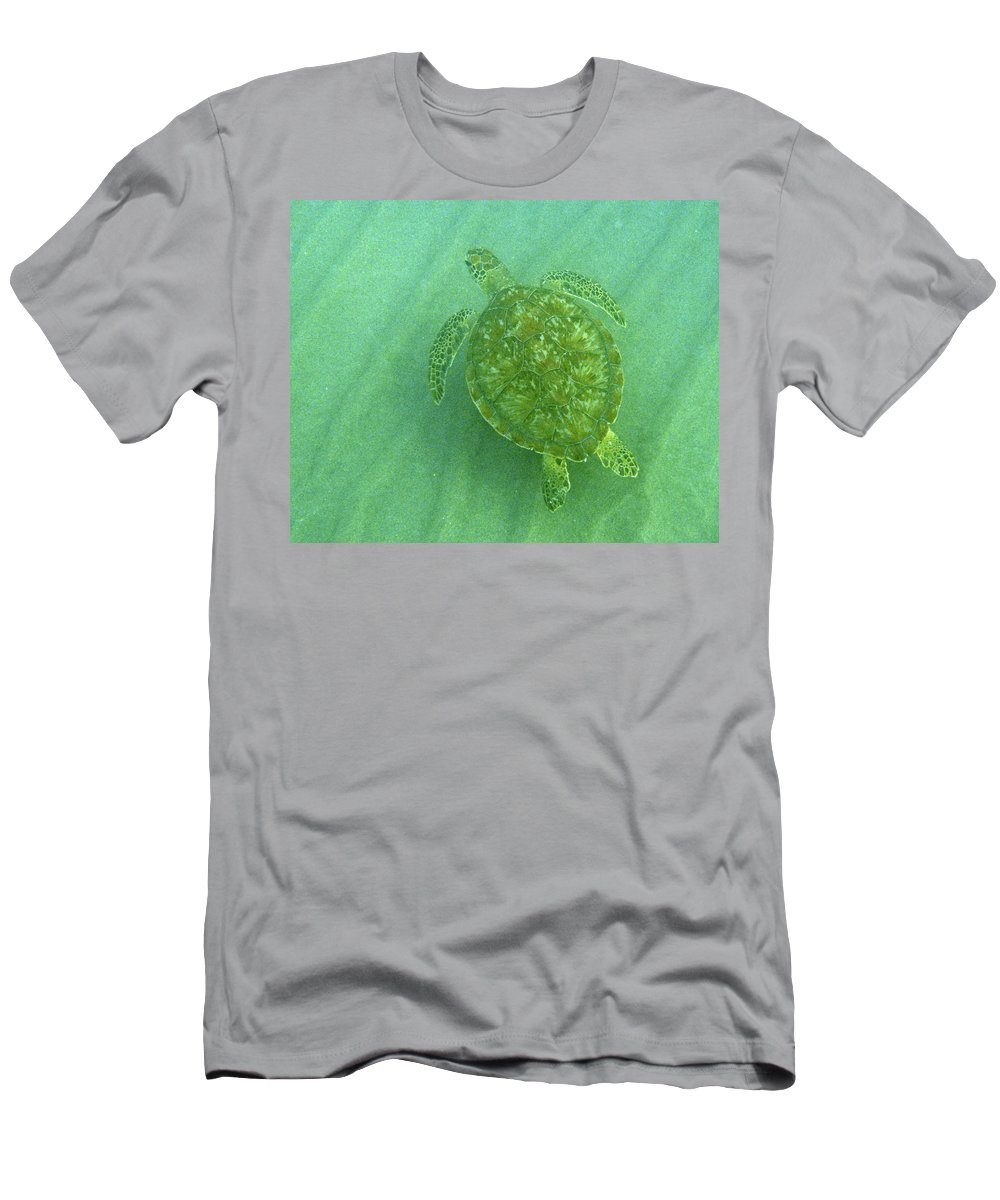 Nature T-Shirt featuring the photograph Gliding Green by Kimberly Mohlenhoff
