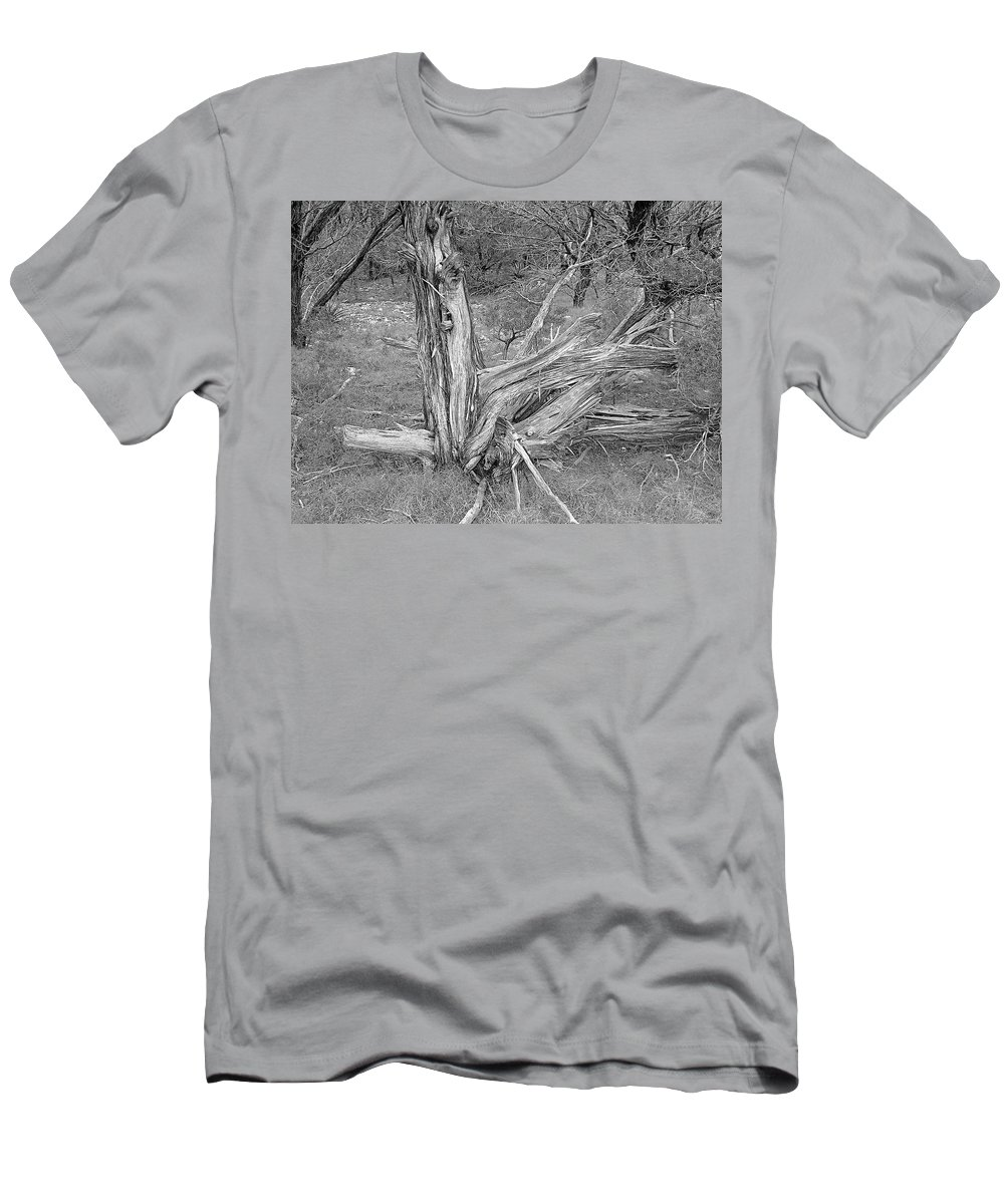 Trees Men's T-Shirt (Athletic Fit) featuring the photograph Gnarled Cedar Stump by Jim Smith