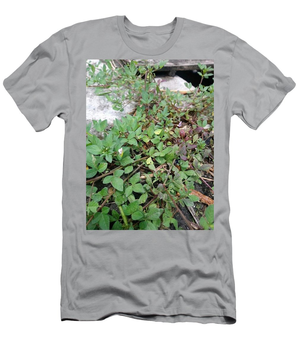 Grass Men's T-Shirt (Athletic Fit) featuring the photograph Grass by Zhia Onid