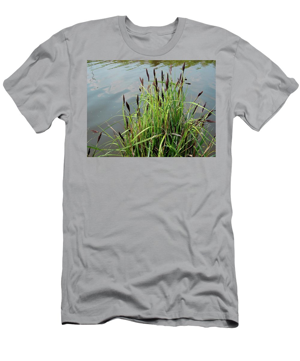 Outdoors Men's T-Shirt (Athletic Fit) featuring the photograph Grasses With Seed Heads by Rod Johnson