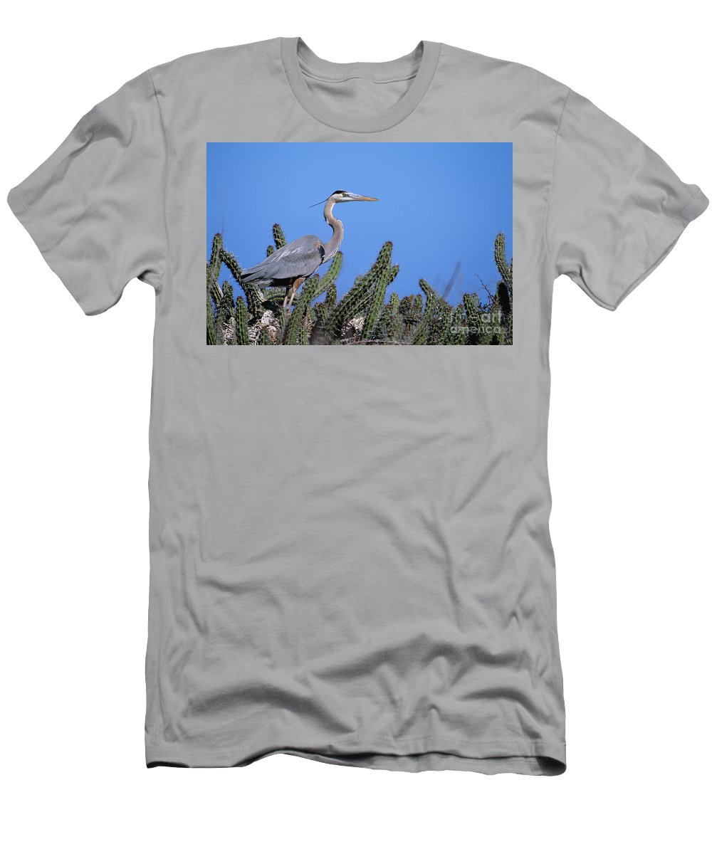 Animal Art Men's T-Shirt (Athletic Fit) featuring the photograph Great Blue Heron by John Hyde - Printscapes