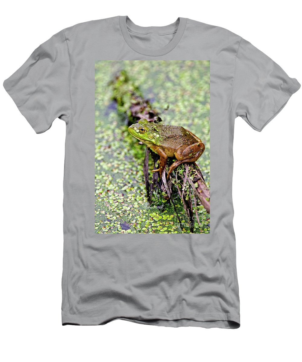 Frog Men's T-Shirt (Athletic Fit) featuring the photograph Green Frog On Log by Michael Cummings