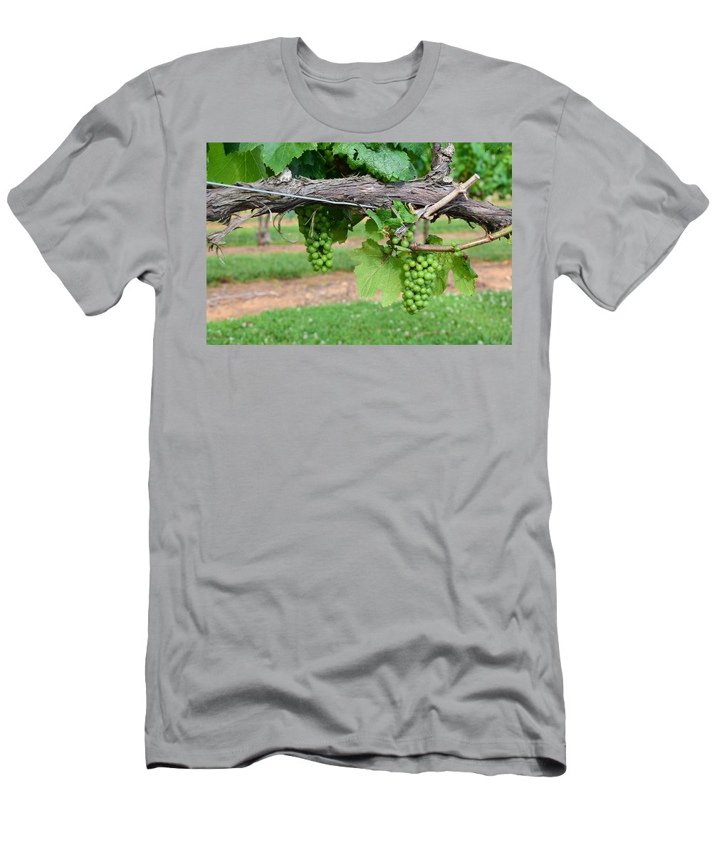 Fruit Men's T-Shirt (Athletic Fit) featuring the photograph Green Grapes by Timothy Markley