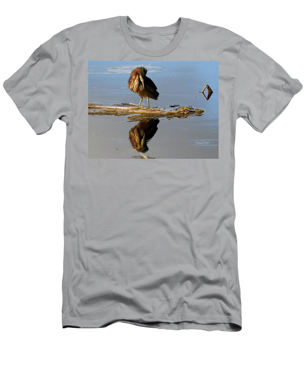 Bird Men's T-Shirt (Athletic Fit) featuring the photograph Green Heron Preening by Mercedes Martishius