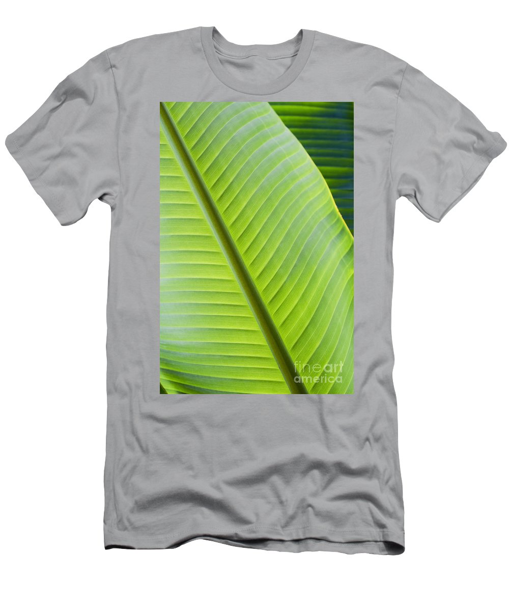 Abstract Men's T-Shirt (Athletic Fit) featuring the photograph Green Tropical Leaves by Joe Carini - Printscapes