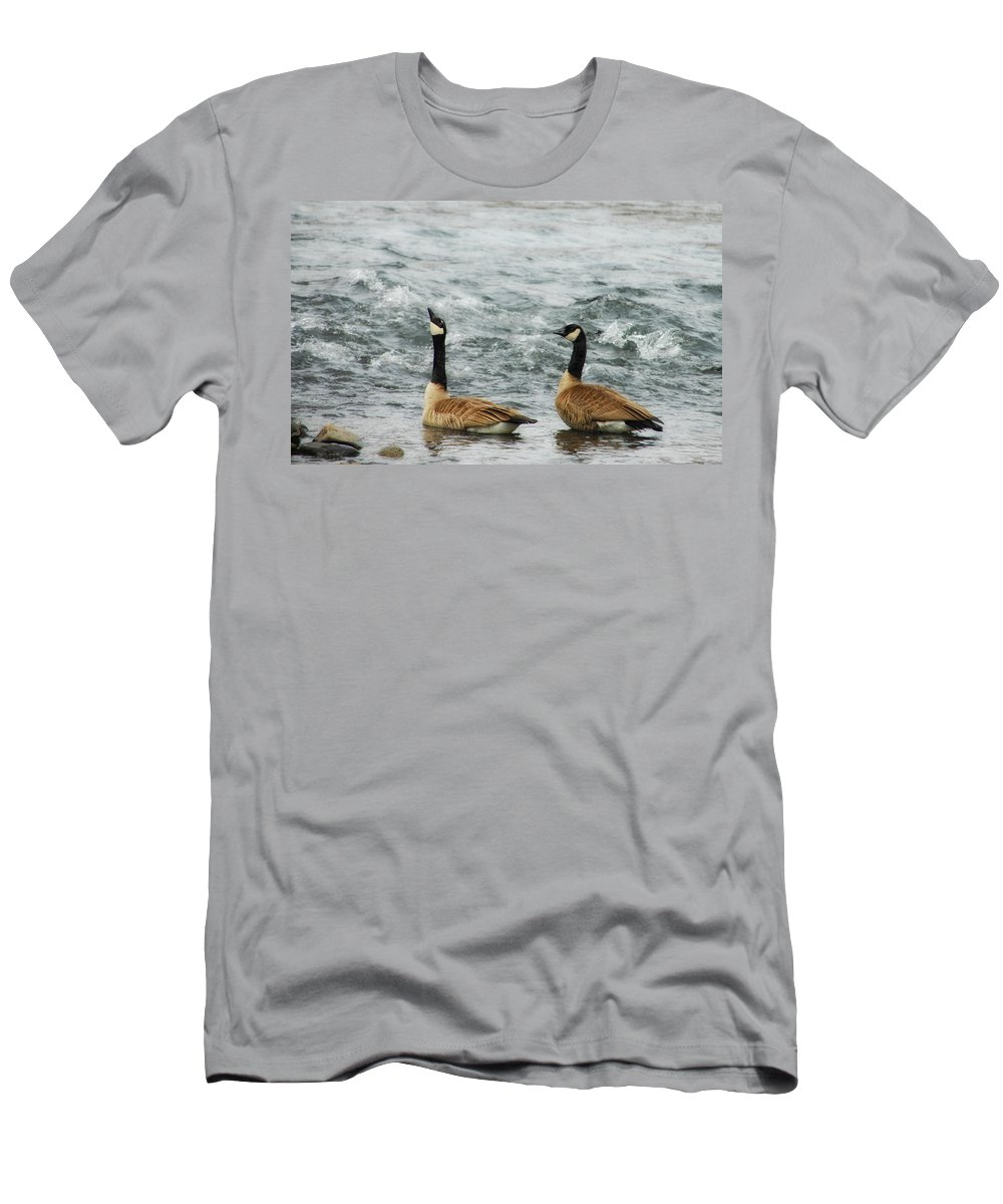 Geese Men's T-Shirt (Athletic Fit) featuring the photograph Guess Who's Coming To Dinner by Donna Blackhall