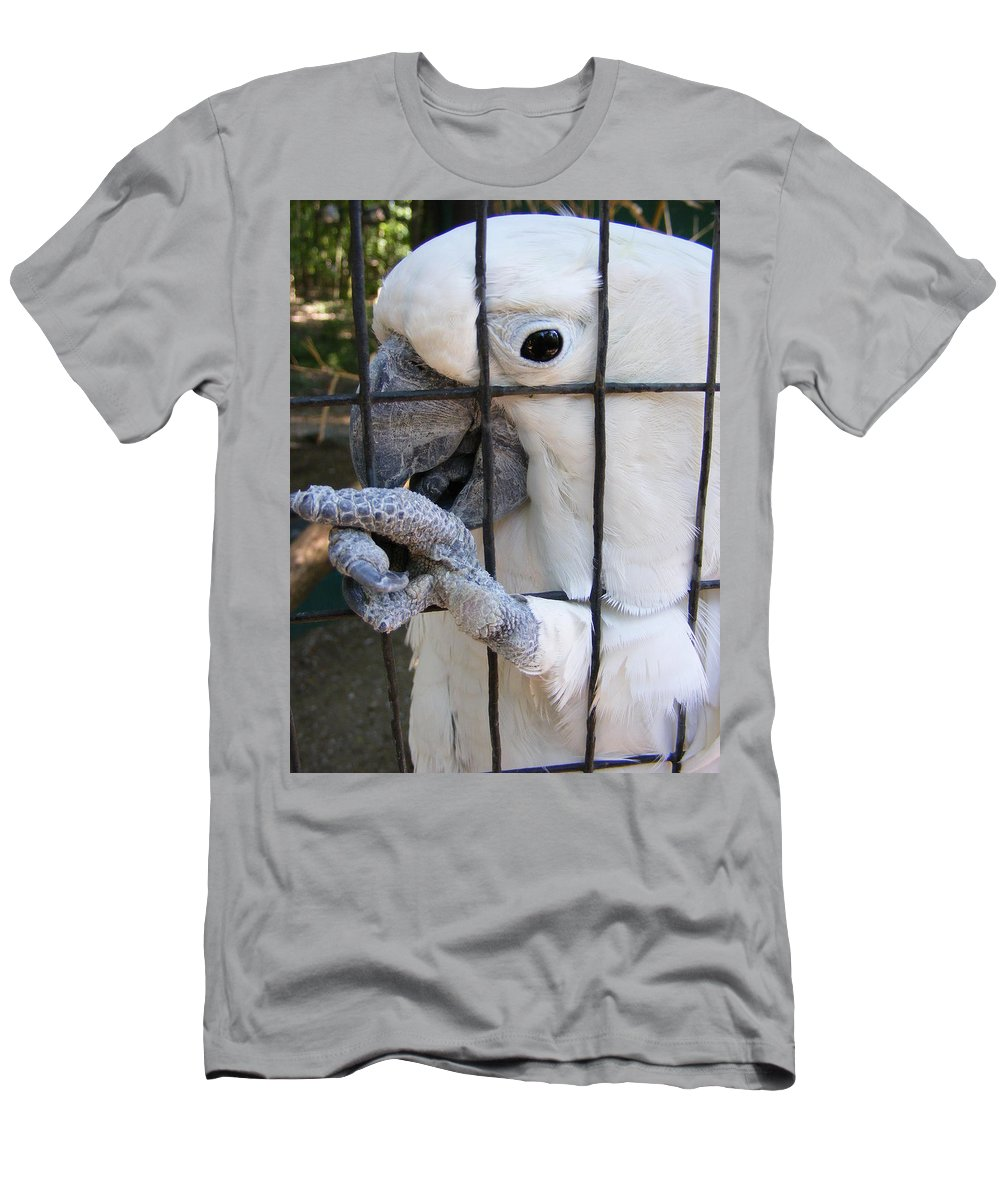 Bird Men's T-Shirt (Athletic Fit) featuring the photograph Hand Me The Key Please by Ed Smith