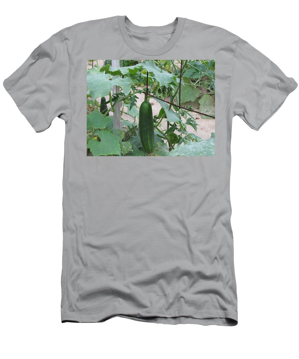Cucumber Men's T-Shirt (Athletic Fit) featuring the photograph Hanging Out by Pam Davis