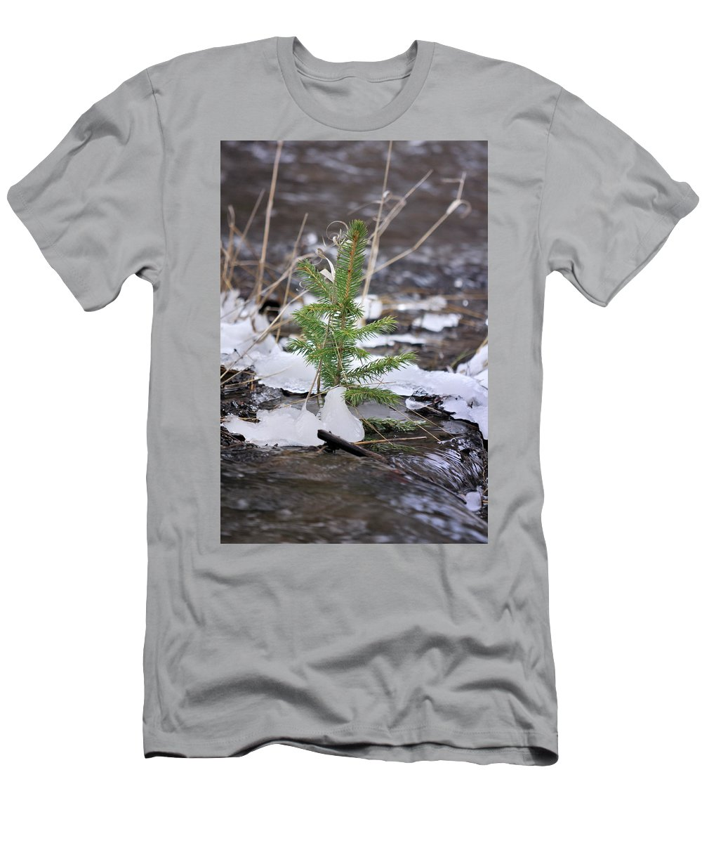 Landscape Men's T-Shirt (Athletic Fit) featuring the photograph Hanging In There by Ron Cline