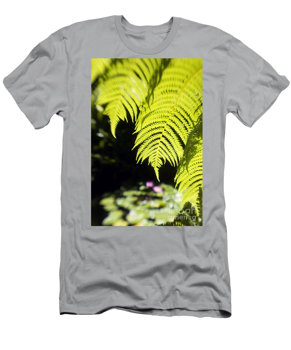 Abstract Men's T-Shirt (Athletic Fit) featuring the photograph Hapuu Ferns by Ron Dahlquist - Printscapes