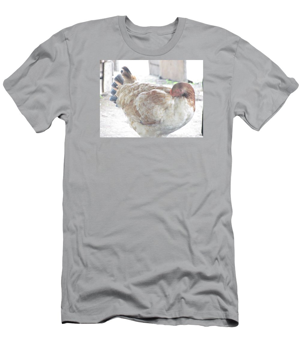 Hen Men's T-Shirt (Athletic Fit) featuring the photograph Hen by Patti Valenti