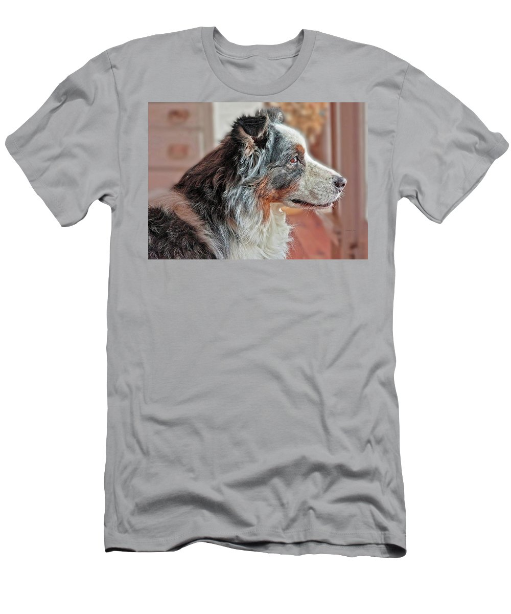 Border Collie Men's T-Shirt (Athletic Fit) featuring the photograph Herding Daydreams by Suzanne Stout