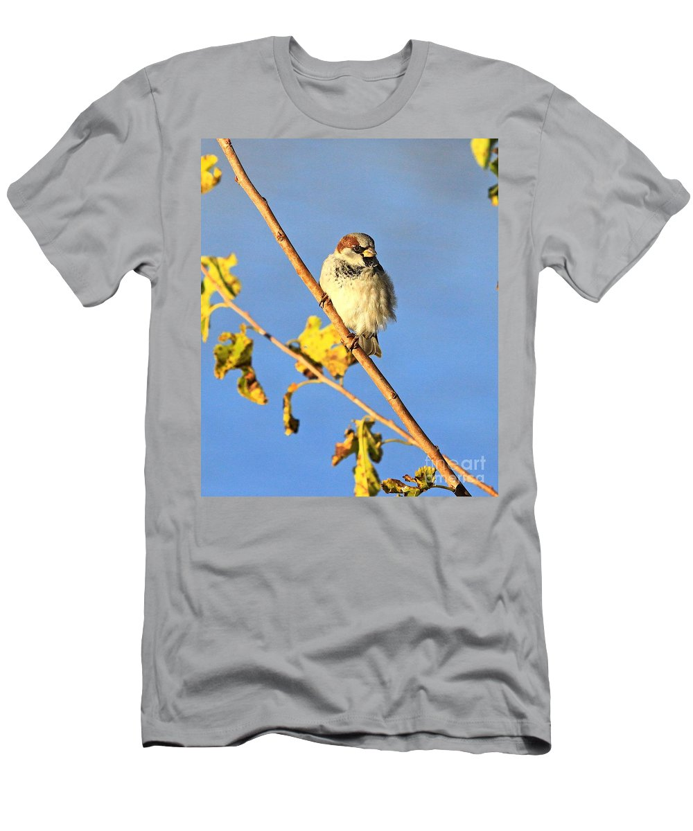 Jesus Men's T-Shirt (Athletic Fit) featuring the photograph His Eye Is On The Sparrow by Robert Pearson