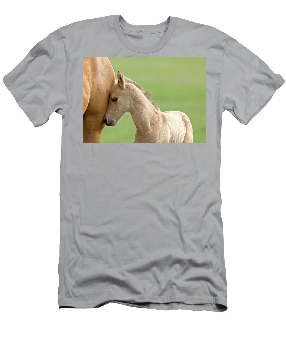 Horse Men's T-Shirt (Athletic Fit) featuring the digital art Horse And Colt by Mark Duffy