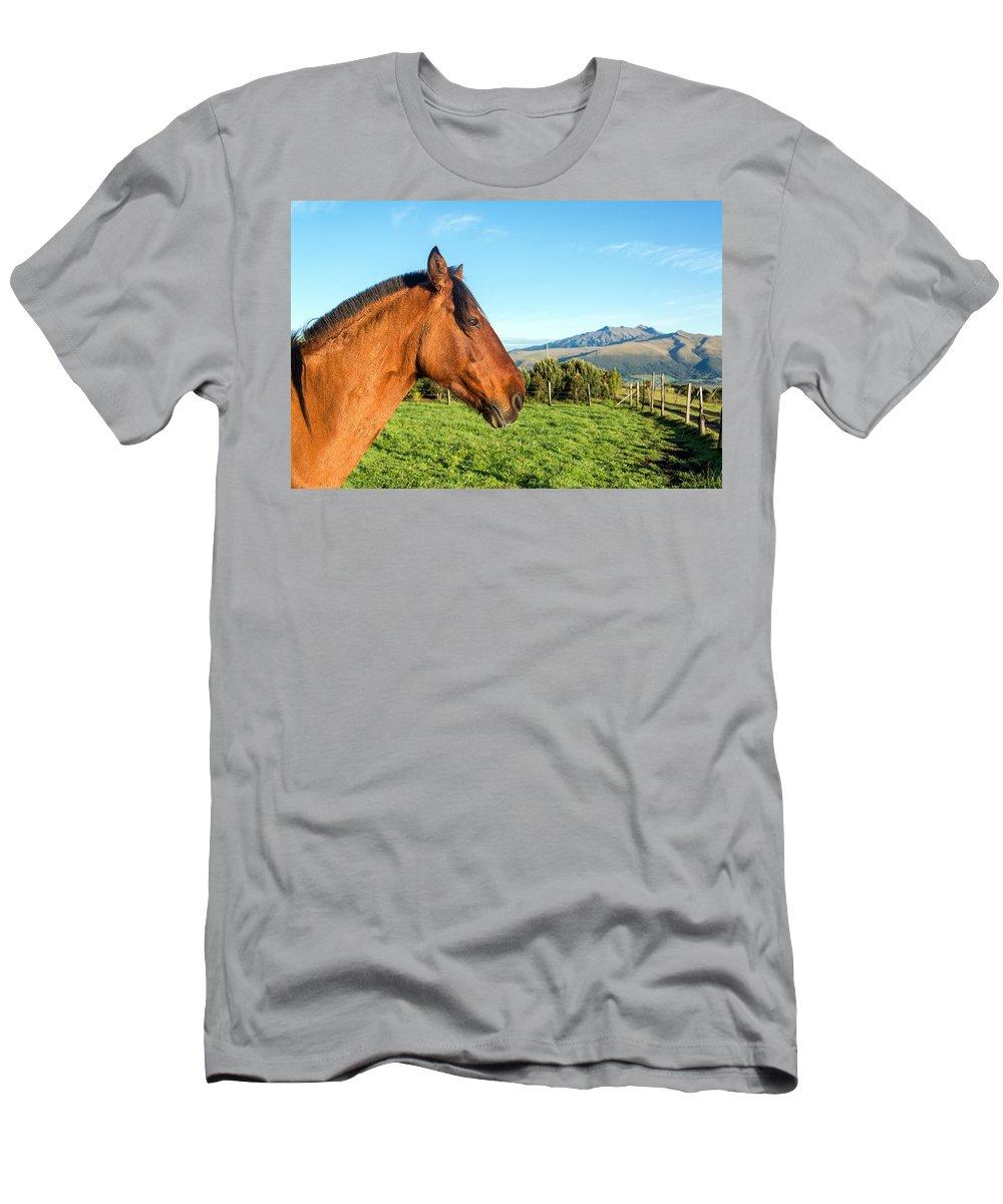 Ecuador Men's T-Shirt (Athletic Fit) featuring the photograph Horse Head Closeup by Jess Kraft