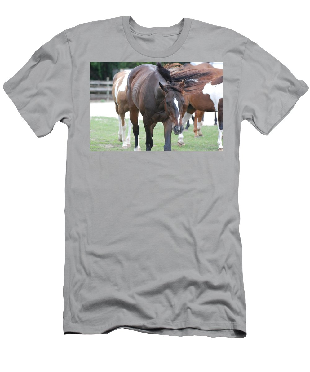Horses Men's T-Shirt (Athletic Fit) featuring the photograph Horses by Rob Hans
