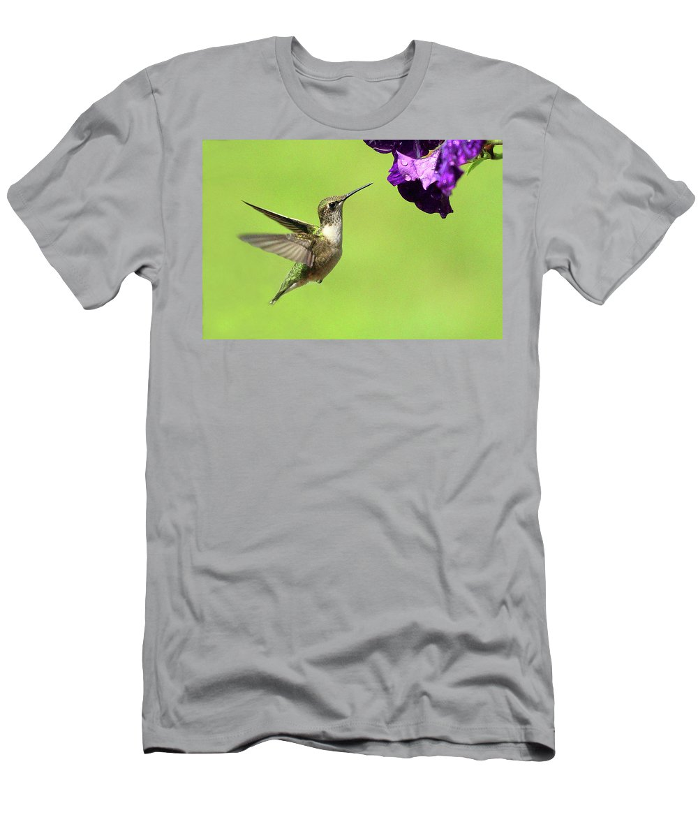 Bird Men's T-Shirt (Athletic Fit) featuring the photograph Hummingbird by Lou Ford